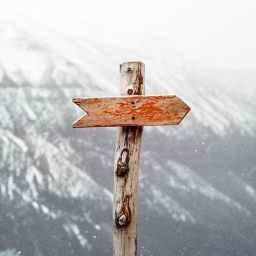 Just The Knowledge of God's Direction